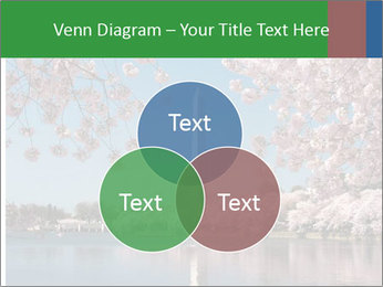 Spring In Japan PowerPoint Template - Slide 33
