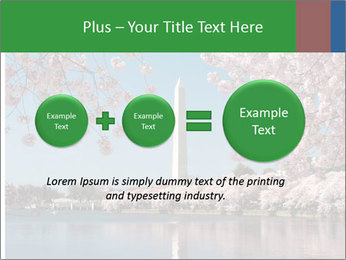 Spring In Japan PowerPoint Template - Slide 75