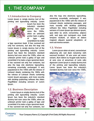 0000089235 Word Template - Page 3
