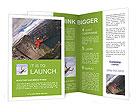 0000089241 Brochure Templates
