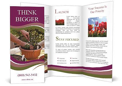 0000089243 Brochure Template