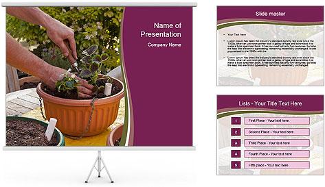 Pot Plant PowerPoint Template