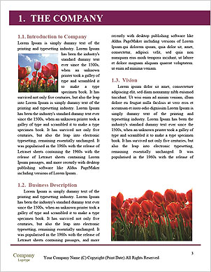 0000089243 Word Template - Page 3