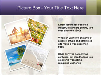 Great Collie Dog PowerPoint Template - Slide 23