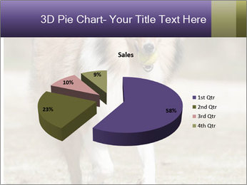 Great Collie Dog PowerPoint Template - Slide 35