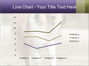 Great Collie Dog PowerPoint Template - Slide 54