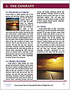0000089252 Word Templates - Page 3