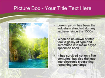 Holland Suburb PowerPoint Template - Slide 13