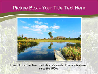 Holland Suburb PowerPoint Template - Slide 15
