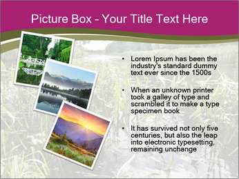 Holland Suburb PowerPoint Template - Slide 17