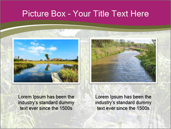 Holland Suburb PowerPoint Template - Slide 18