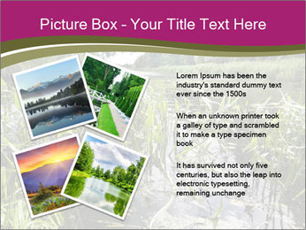 Holland Suburb PowerPoint Template - Slide 23