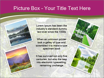 Holland Suburb PowerPoint Template - Slide 24
