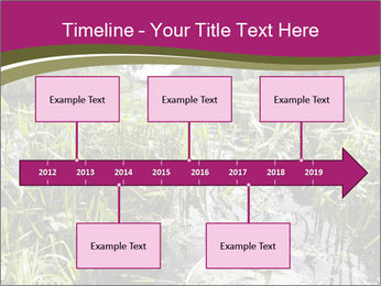 Holland Suburb PowerPoint Templates - Slide 28
