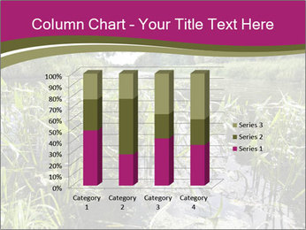 Holland Suburb PowerPoint Template - Slide 50