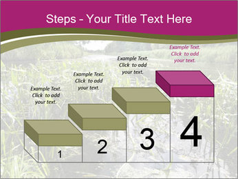 Holland Suburb PowerPoint Templates - Slide 64