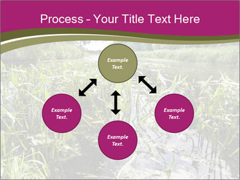 Holland Suburb PowerPoint Templates - Slide 91