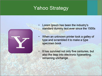 Wild Turtle PowerPoint Templates - Slide 11