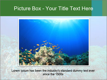 Wild Turtle PowerPoint Template - Slide 15