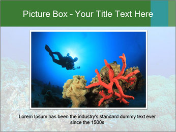 Wild Turtle PowerPoint Template - Slide 16