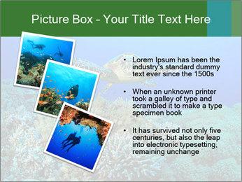 Wild Turtle PowerPoint Templates - Slide 17