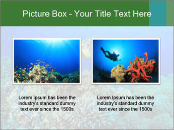 Wild Turtle PowerPoint Template - Slide 18