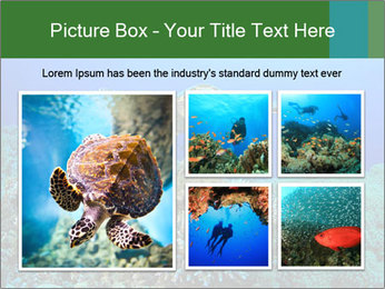 Wild Turtle PowerPoint Template - Slide 19