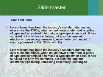 Wild Turtle PowerPoint Template - Slide 2