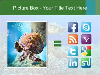 Wild Turtle PowerPoint Templates - Slide 21