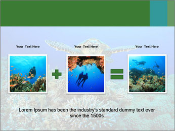 Wild Turtle PowerPoint Template - Slide 22