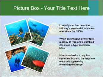 Wild Turtle PowerPoint Template - Slide 23
