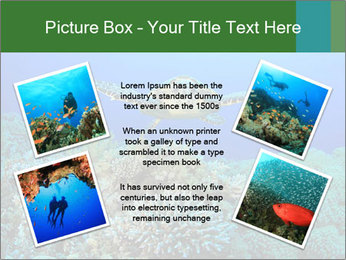 Wild Turtle PowerPoint Templates - Slide 24