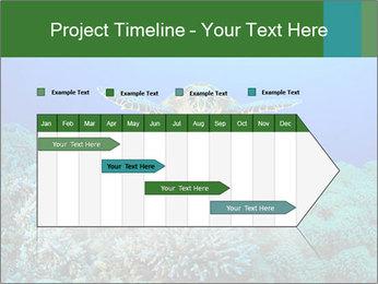 Wild Turtle PowerPoint Template - Slide 25