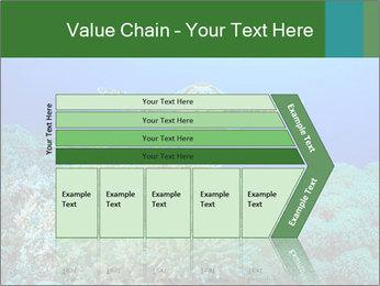 Wild Turtle PowerPoint Templates - Slide 27