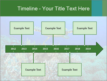 Wild Turtle PowerPoint Template - Slide 28