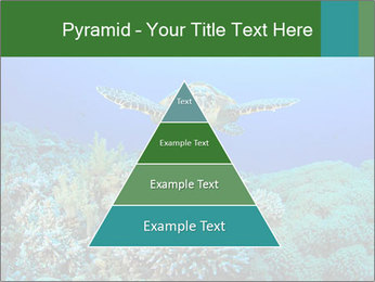 Wild Turtle PowerPoint Template - Slide 30