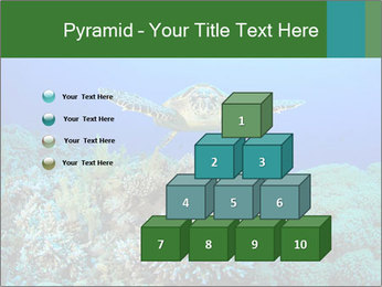 Wild Turtle PowerPoint Template - Slide 31