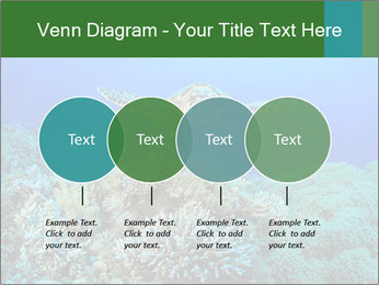 Wild Turtle PowerPoint Template - Slide 32