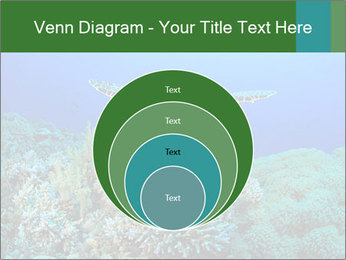 Wild Turtle PowerPoint Template - Slide 34