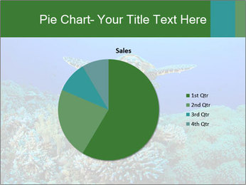Wild Turtle PowerPoint Template - Slide 36