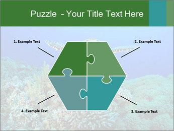 Wild Turtle PowerPoint Template - Slide 40