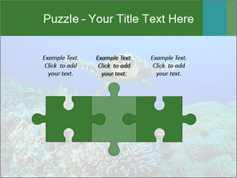 Wild Turtle PowerPoint Template - Slide 42