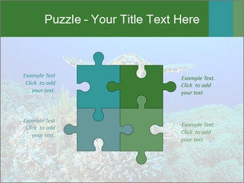 Wild Turtle PowerPoint Templates - Slide 43
