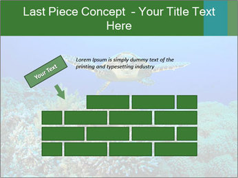 Wild Turtle PowerPoint Template - Slide 46