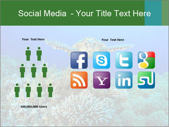 Wild Turtle PowerPoint Template - Slide 5