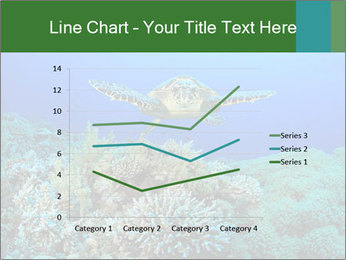 Wild Turtle PowerPoint Templates - Slide 54
