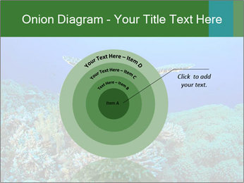 Wild Turtle PowerPoint Template - Slide 61