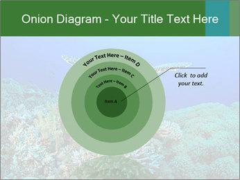 Wild Turtle PowerPoint Templates - Slide 61