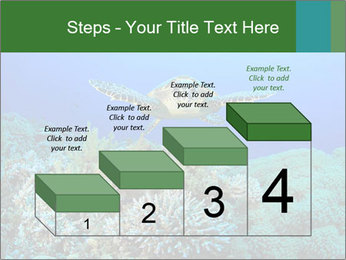 Wild Turtle PowerPoint Templates - Slide 64
