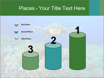 Wild Turtle PowerPoint Template - Slide 65